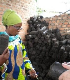 Appui à la création d'une filière de production d'un combustible vert (briquette). Rwanda