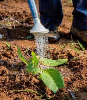 En cours de financement : améliorer la fertilité des sols à Uvira – RD